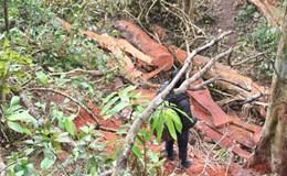 """Cận cảnh rừng phòng hộ Hướng Hóa - ĐakRông bị lâm tặc """"xẻ thịt"""""""