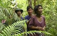 """Đưa 2 """"người rừng"""" sống 40 năm trên cây về chăm sóc"""