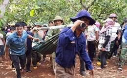 16 ngày có 8 học sinh tại Gia Lai tử vong vì đuối nước