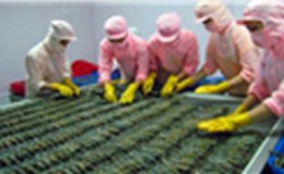 Số lượng vi phạm về thực phẩm Việt Nam vào Úc đã giảm 50%