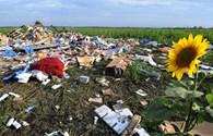 Vụ MH17: Địa ngục giữa thiên đường hoa hướng dương