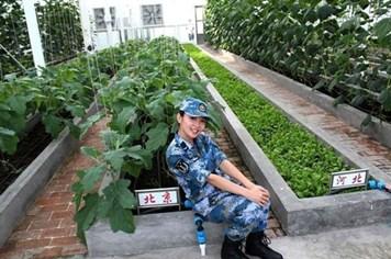 Trung Quốc công bố ảnh trồng rau, nuôi gia súc trên Đá Chữ Thập của Việt Nam