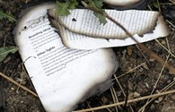 5 câu hỏi chưa có giải đáp trong vụ máy bay MH17 bị bắn rơi