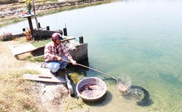 Xử phạt Cty TNHH Đường Khánh Hòa hơn 3 tỉ đồng vì sai phạm trong xử lý môi trường