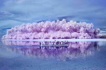 """Kỳ lạ """"hòn đảo mù màu"""" giữa Thái Bình Dương"""