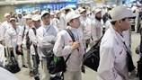 Vì sao lao động từ Hàn Quốc về nước khó tìm việc?