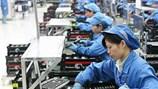 Thu giấy phép 5 công ty xuất khẩu lao động