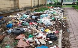 Hà Nội: Hãi hùng rác thải bốc mùi tại công viên Đền Lừ