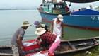 Hỗ trợ học nghề, chuyển nghề cho ngư dân 4 tỉnh miền Trung sau sự cố Formosa