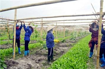 Quảng Ninh: Mục tiêu giảm nghèo đạt được nhưng phải bền vững
