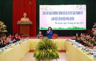 """Phú Xuyên: Tập trung nguồn lực """"cán đích"""" nông thôn mới"""
