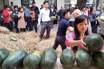 Bộ Công Thương mua 14 tấn dưa hấu giúp nông dân