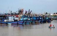 Bão số 13: Khánh Hòa còn 214 tàu cá và 2 tàu cá bị trôi dạt trên biển
