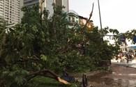 """Những hình ảnh đường phố Hà Nội """"xơ xác"""" sau cơn vũ bão"""