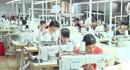 Ninh Bình: Nâng cao hiệu quả hoạt động thị trường việc làm