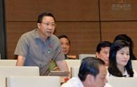 Quy hoạch bán đảo Sơn Trà: Phải chống lợi ích nhóm