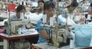 Trà Vinh: Hỗ trợ việc làm cho người lao động