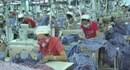 Thị xã Bình Minh (Vĩnh Long): Đào tạo nghề và giải quyết việc làm cho trên 1.800 lao động