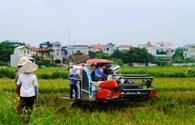 Xây dựng nông thôn mới tại huyện Phú Xuyên và Thường Tín:  Đẩy nhanh tiến độ cấp giấy chứng nhận quyền sử dụng đất