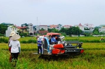 Hà Nội: Lập hội đồng thẩm định, công nhận xã đạt chuẩn nông thôn mới