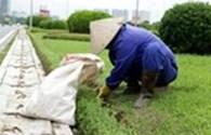 Ban Quản lý Quảng trường Ba Đình tuyển dụng lao động