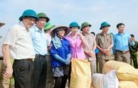 10 năm xây dựng Nông thôn mới: Nhiều thành tựu nổi bật