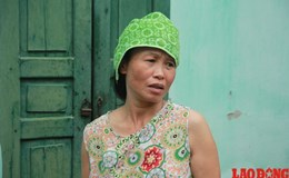 Hà Nội: Cả làng quay cuồng với đại dịch… sốt xuất huyết