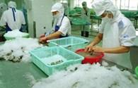 Việt Nam nên kiện Mỹ về thuế chống bán phá giá
