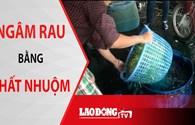 NÓNG 24H: Ngâm rau bằng chất nhuộm, 47,5 tấn cá chết chưa rõ nguyên nhân