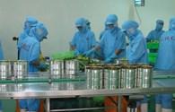 Tai nạn lao động gia tăng: Do thiếu văn hóa an toàn lao động