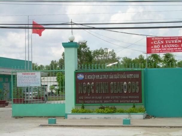 Xí nghiệp kinh doanh chế biến thủy sản xuất khẩu Ngọc Sinh - một điển hình làm ăn kém hiệu quả - được VDB Cà Mau cho vay đến 291 tỉ đồng, trong khi toàn bộ tài sản thế chấp chỉ 88 tỉ đồng.