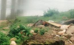 Vụ tai nạn thảm khốc ở Nghệ An: 3 người chết, 1 người bị thương là người trong gia đình