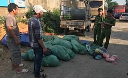 Bắt giữ 15 bao tải da lợn thối chở vào Thanh Hoá để chế biến thực phẩm