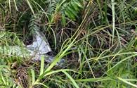 Cận cảnh những mảnh vụn máy bay rơi tại TP HCM