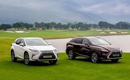 Lexus triệu hồi xe tiền tỉ lỗi túi khí tại Việt Nam