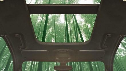 Cây tre, cây dâm bụt được dùng để sản xuất ôtô thế nào?