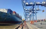 """Phát hiện 60 container chuẩn bị """"mất tích"""" tại cảng Cát Lái"""