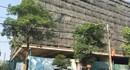 Nhiều 'ông lớn' bất động sản ở Nghệ An nợ tiền sử dụng đất