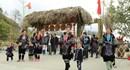 Lễ hội hoa đỗ quyên lần đầu tiên tổ chức tại Fansipan