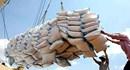 Gạo nội ế trong kho, dân lùng mua gạo ngoại