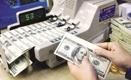 Nhập siêu tăng gây áp lực lớn lên tỉ giá năm 2017