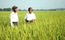 Để người dân tự nguyện góp quyền sử dụng đất