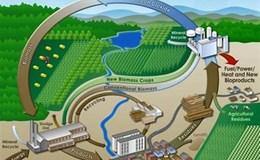 Độc đáo sáng chế tăng chất lượng dầu nhiệt phân sinh khối, thay thế các sản phẩm dầu mỏ