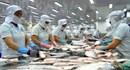 Thận trọng hàng thủy hải sản bị ách lại khi xuất khẩu sang Algeria