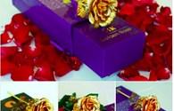 """Hoa hồng vàng """"loạn giá"""" đến 250 triệu đồng/bông"""