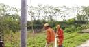 EVNNPC:  Chuẩn bị tốt các giải pháp đảm bảo cấp điện cho mùa nắng nóng