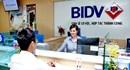 BIDV lợi nhuận tăng trưởng gần 10%, đạt gần 2,3 nghìn tỉ trong quý I/2017