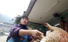 """Ngang nhiên buôn bán thú rừng quý hiếm, """"khoe"""" săn ở VQG Tam Đảo"""