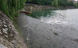Hồ Văn Quán bốc mùi hôi thối nồng nặc, cuộc sống người dân đảo lộn
