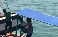 Ngang nhiên mua bán san hô trên vịnh Hạ Long